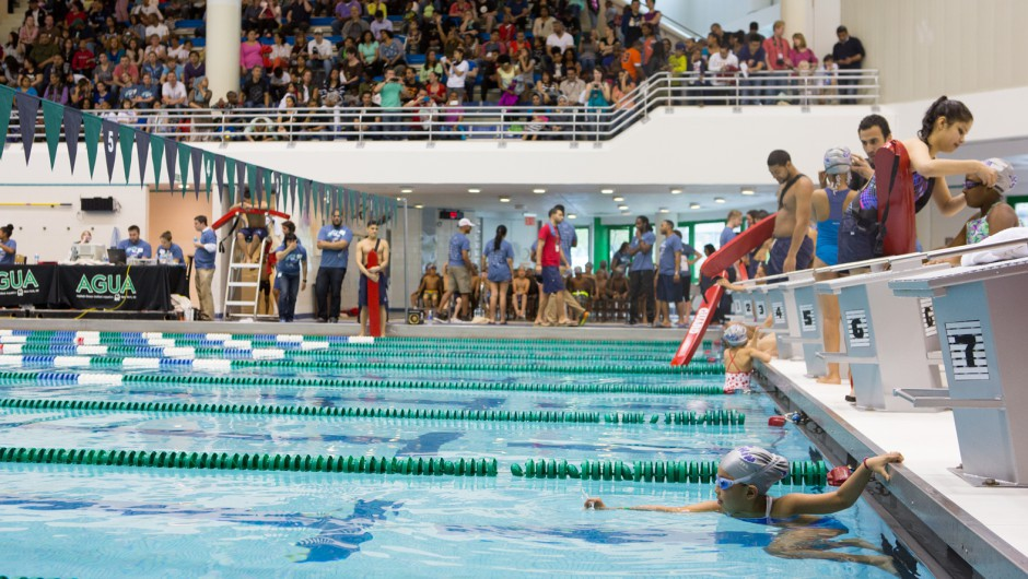 The Big Swim 2014 Was A Huge Success